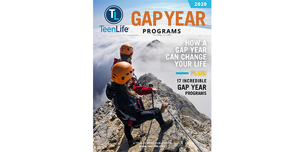 Cover of 2020 Gap Guide