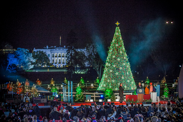 white house tree lighting