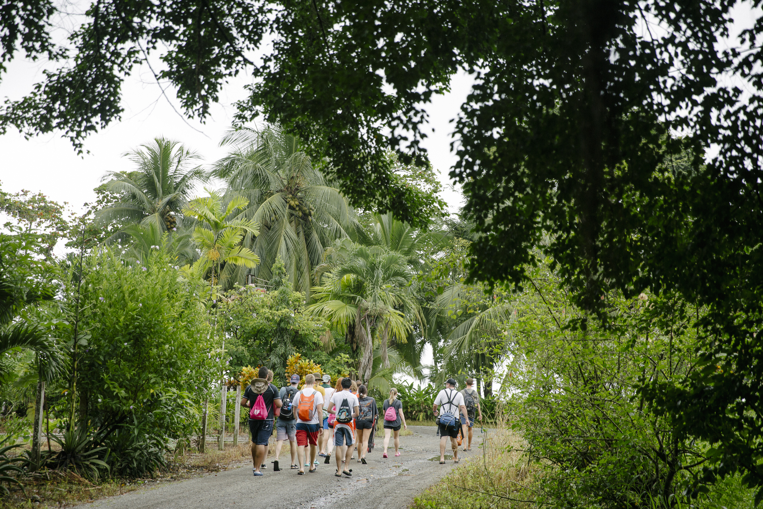 Gap Year Program - EF Gap Year: Costa Rica Immersion  2