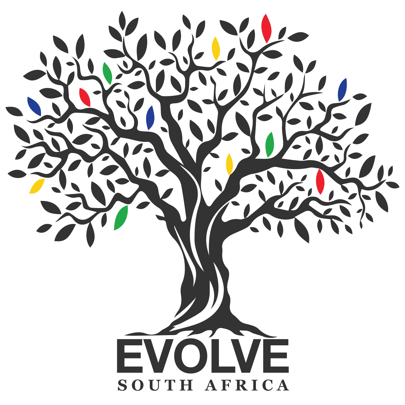 EVOLVE Gap Experience – South Africa