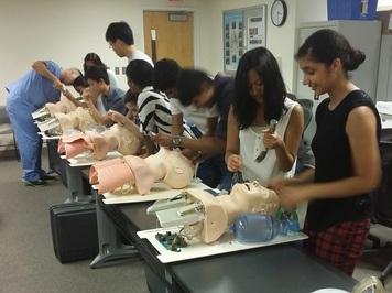 Summer Program - Science | Boston Leadership Institute: Anatomy Summer Program (1 Week)