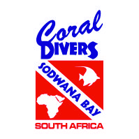 Diving Internship & Gap Year Experience in South Africa