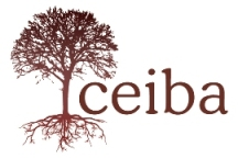 Ceiba Summer:  Community Service Learning and Spanish Immersion