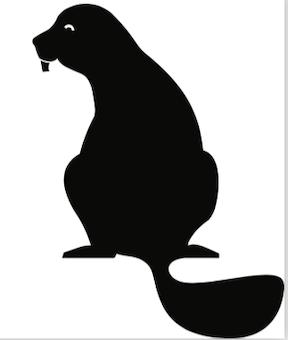 Beaver Works Summer Institute at MIT