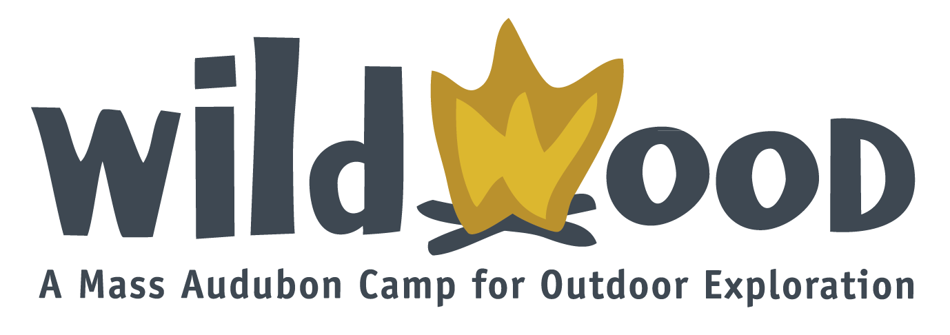 Environmental Leadership Program at Mass Audubon's Wildwood Camp