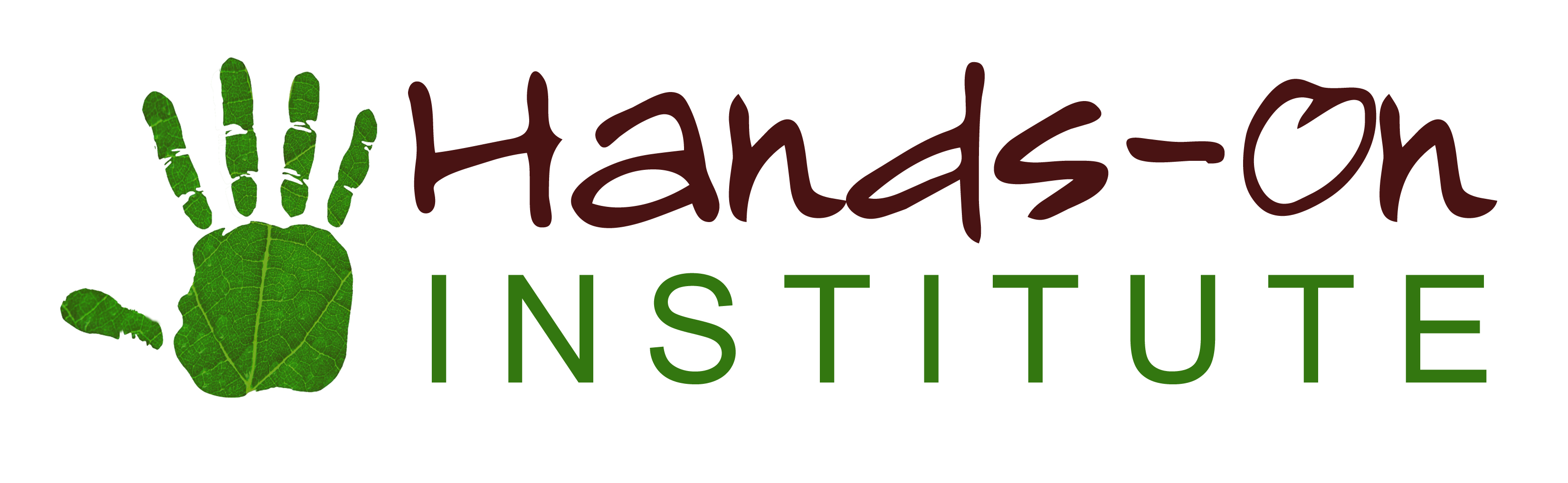 International Sustainability School
