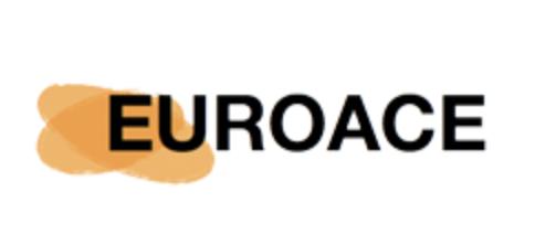 EUROACE: Gap Year Internship