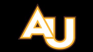 Adelphi University: Virtual Gap Year
