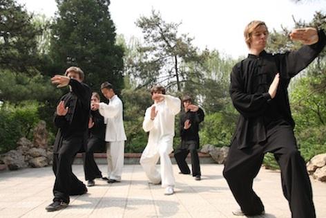 Gap Year Program - Academic Explorers Martial Arts and Mandarin in China  3