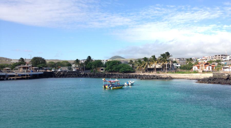 Summer Program - Promoting Volunteerism | ARCC Programs | Ecuador/Galapagos: Island and Village Impact