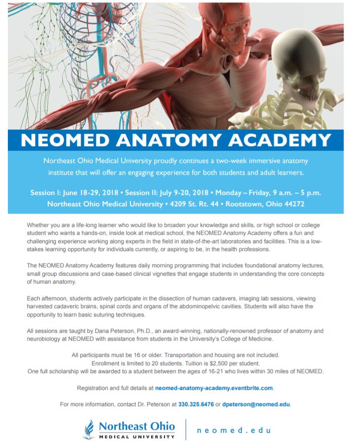 Anatomy Academy at Northeast Ohio University