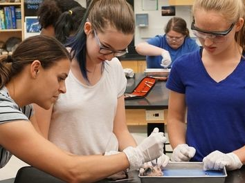 Summer Program - Science | Boston Leadership Institute: Anatomy & Surgical Research