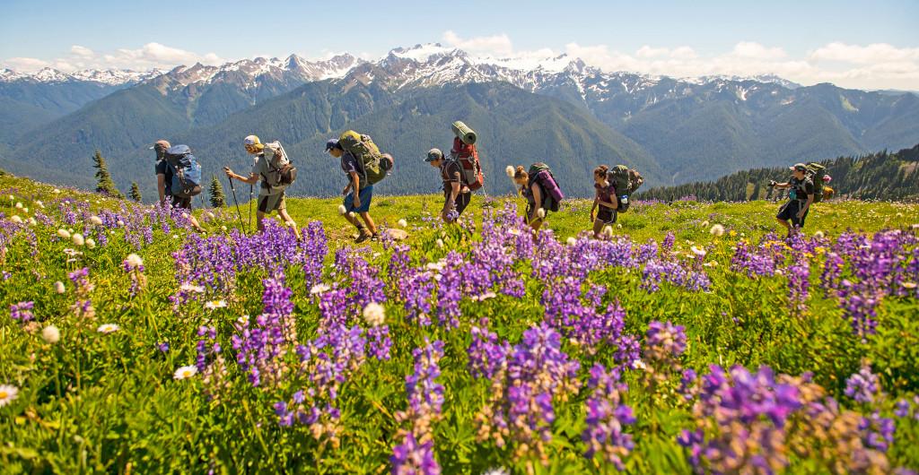 Summer Program - Hiking   Apogee Adventures: Northwest Explorer
