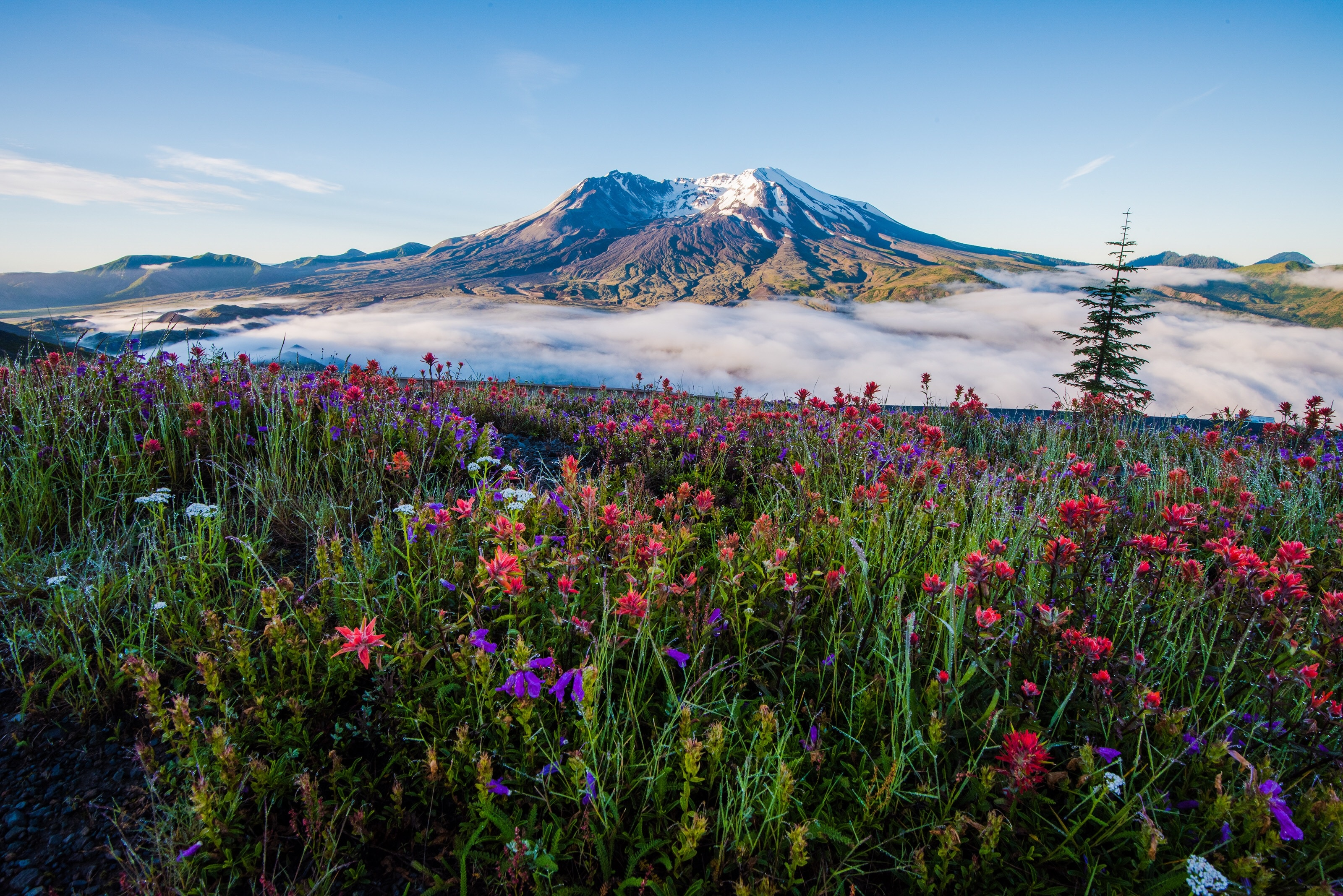 Gap Year Program - ARCC Gap   Northwest: Wyoming, Montana, Idaho, Washington & Hawaii  3