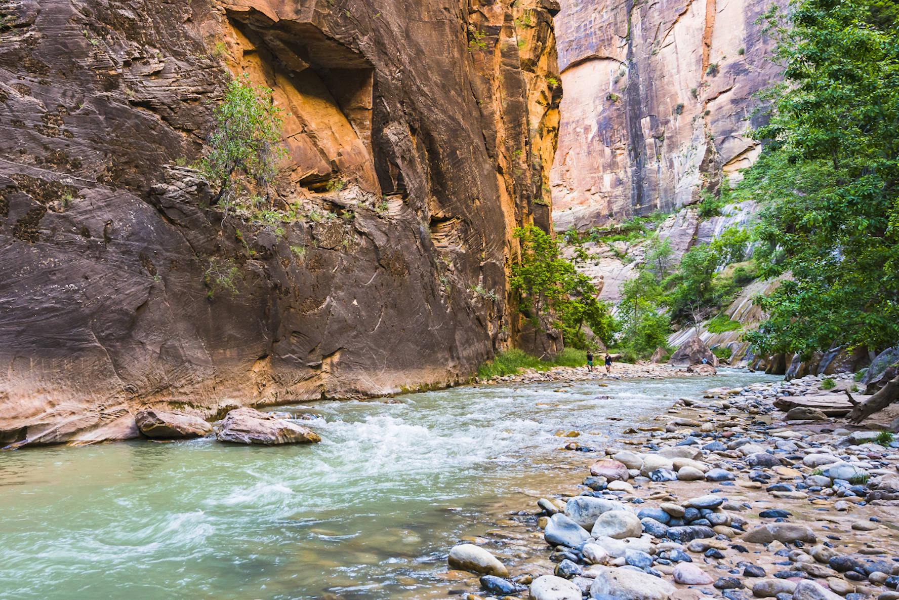 Gap Year Program - ARCC Gap | Southwest: Utah, Colorado, New Mexico, Arizona & California  6