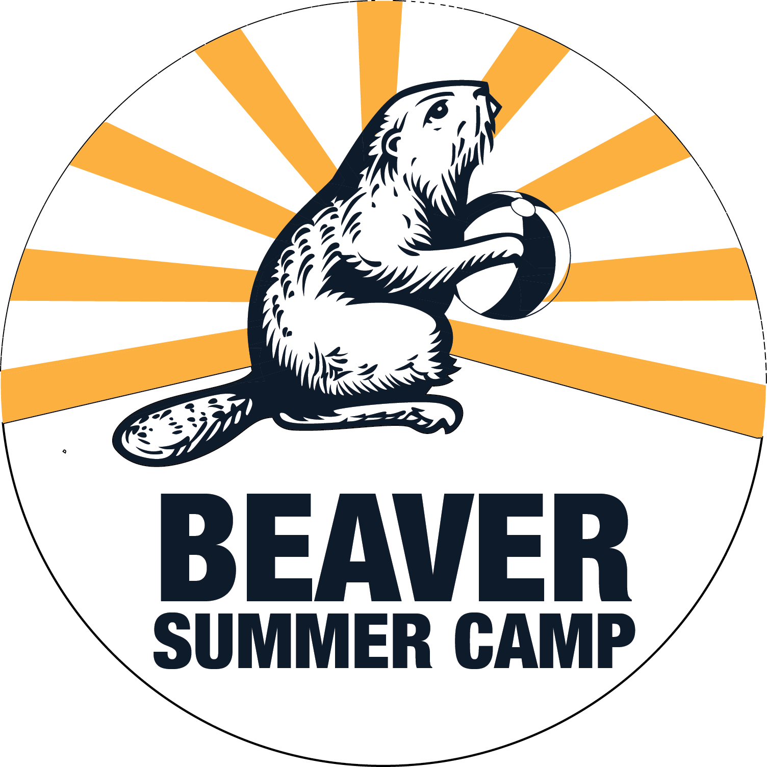 Beaver Summer Camp: Counselor in Training