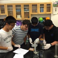Summer Program - Biology | Boston Leadership Institute: Human Genetics Summer Program