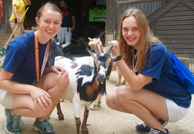 Summer Program - Pre-Med | Boston Leadership Institute: Veterinary Medicine Summer Program