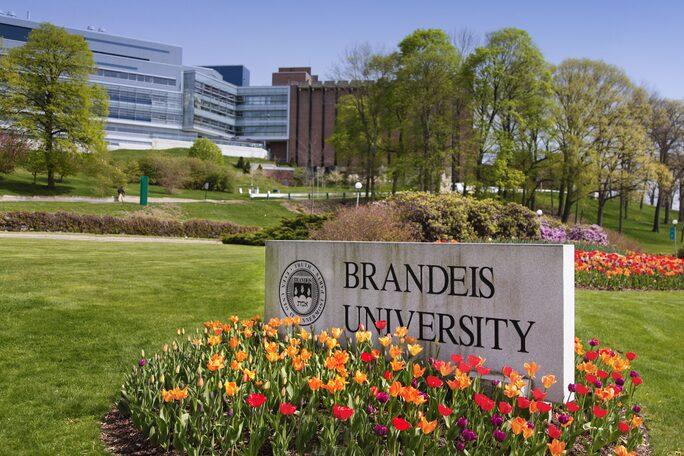 Summer Program - Pre-Med   Brandeis University: Precollege Online Program