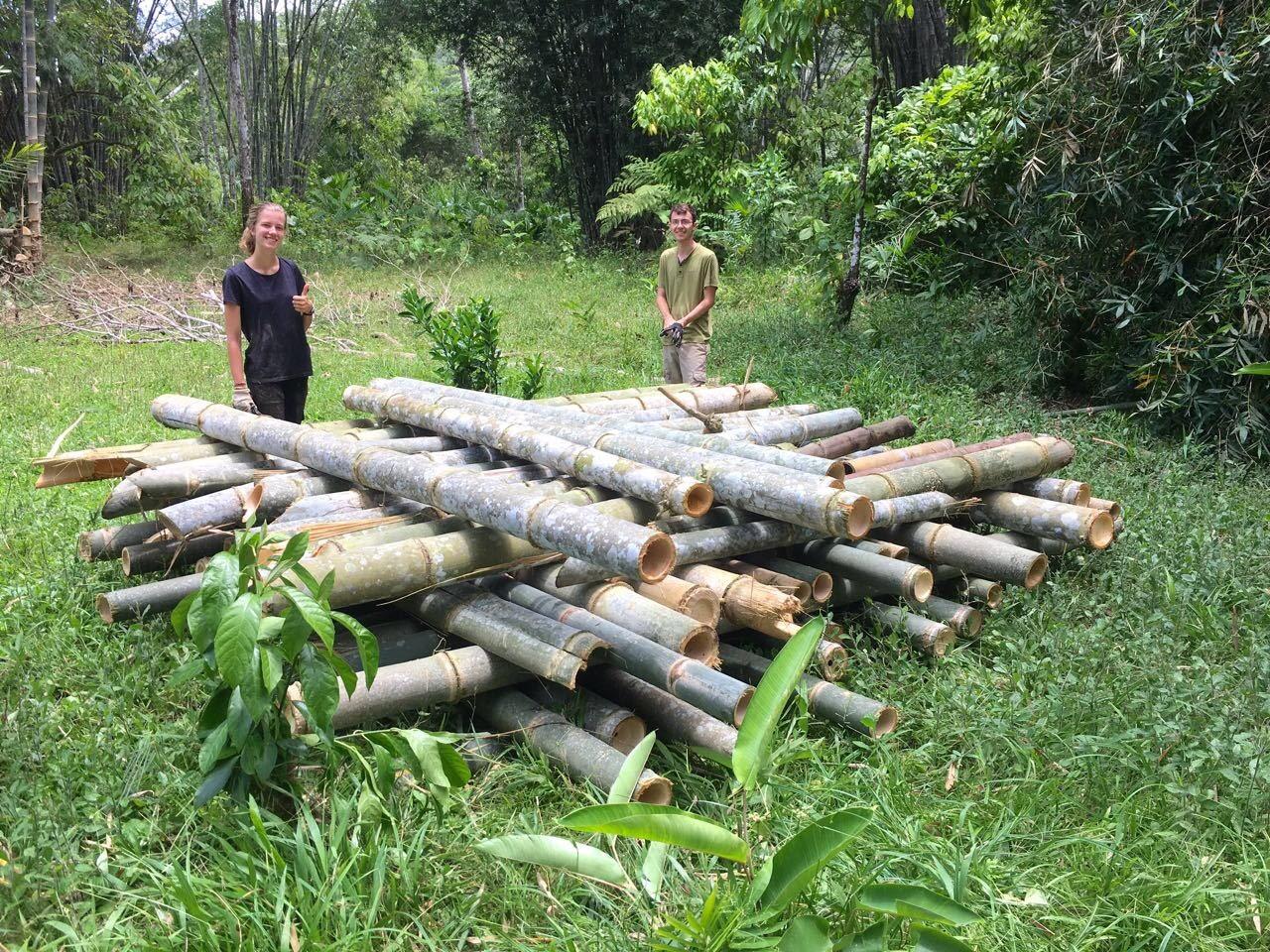 Carpe Diem Education | Ecuador Summer Program