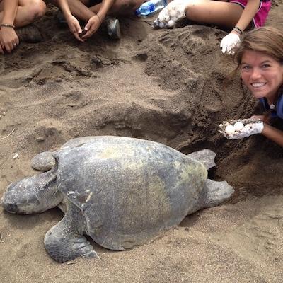 Summer Program - Environmental Conservation | Carpe Diem Education | Costa Rica, Ecuador and Hawaii Summer Programs