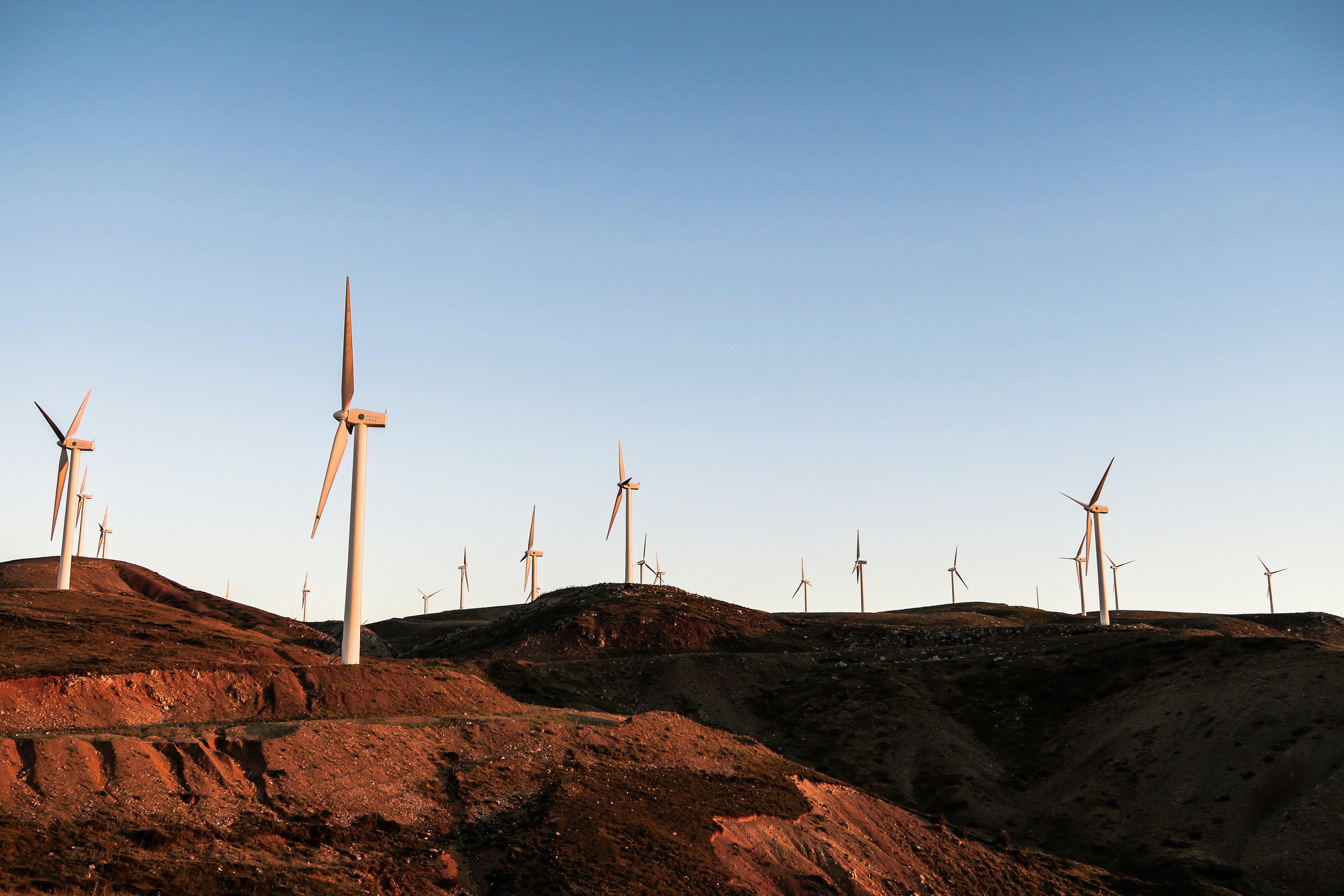 Carpe Diem Education | Italy & Greece Semester: Climate Change: Resilience & Regeneration
