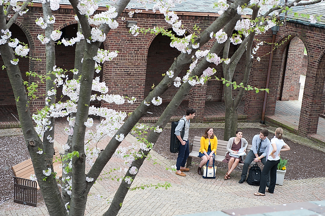 College - The Catholic University of America - Rome School of Music, Drama & Art  2