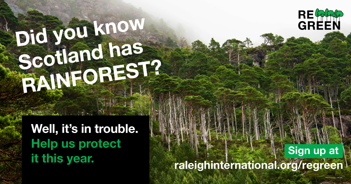 Summer Program - Preserving the Environment   Combat Climate Change with Raleigh International