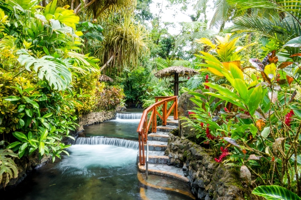 Gap Year Program - Pacific Discovery: Costa Rica Mini Semester Program  4