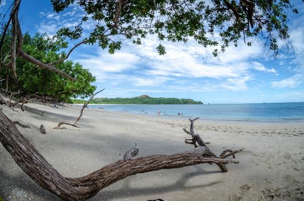 Gap Year Program - Pacific Discovery: Costa Rica Mini Semester Program  3