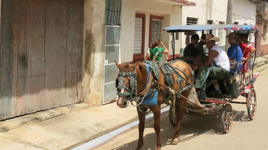 Summer Program - Health and Well Being | ARCC Programs: Cuba - Public Health Initiative