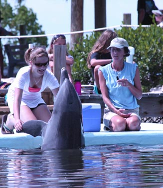 Summer Program - Animals/Nature | DolphinLab Teen
