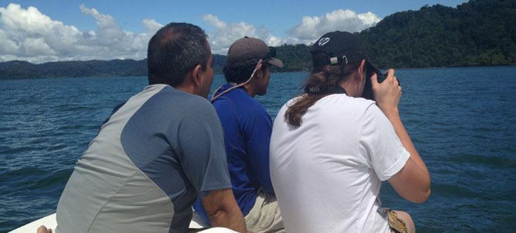 Earthwatch Institute: Marine Mammals and Predators in Costa Rica