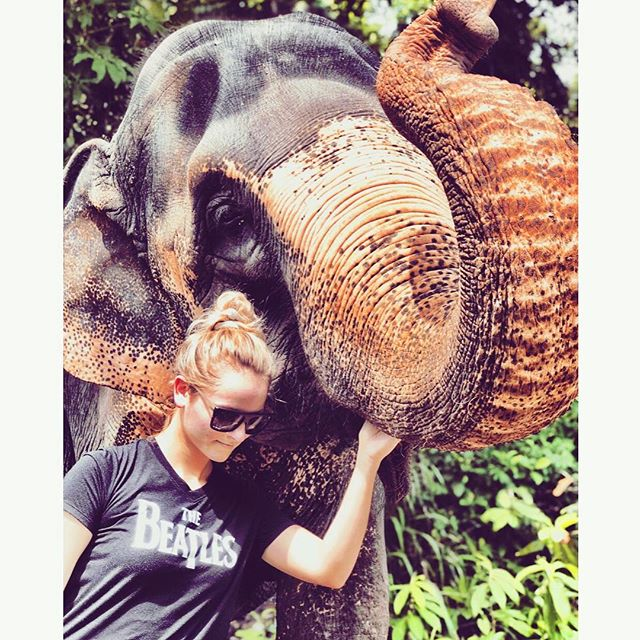 Go Discover Abroad: Elephant Camp & Community Volunteering Project in Sri Lanka