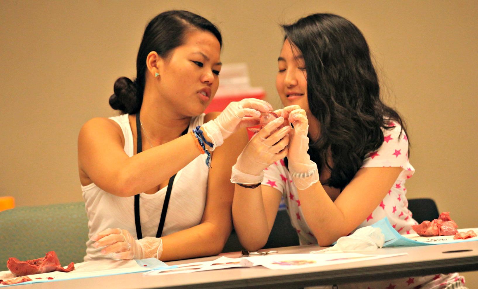Summer Program - Pre-Med | Emory University Summer Pre-College Program: Pre-Health and Science