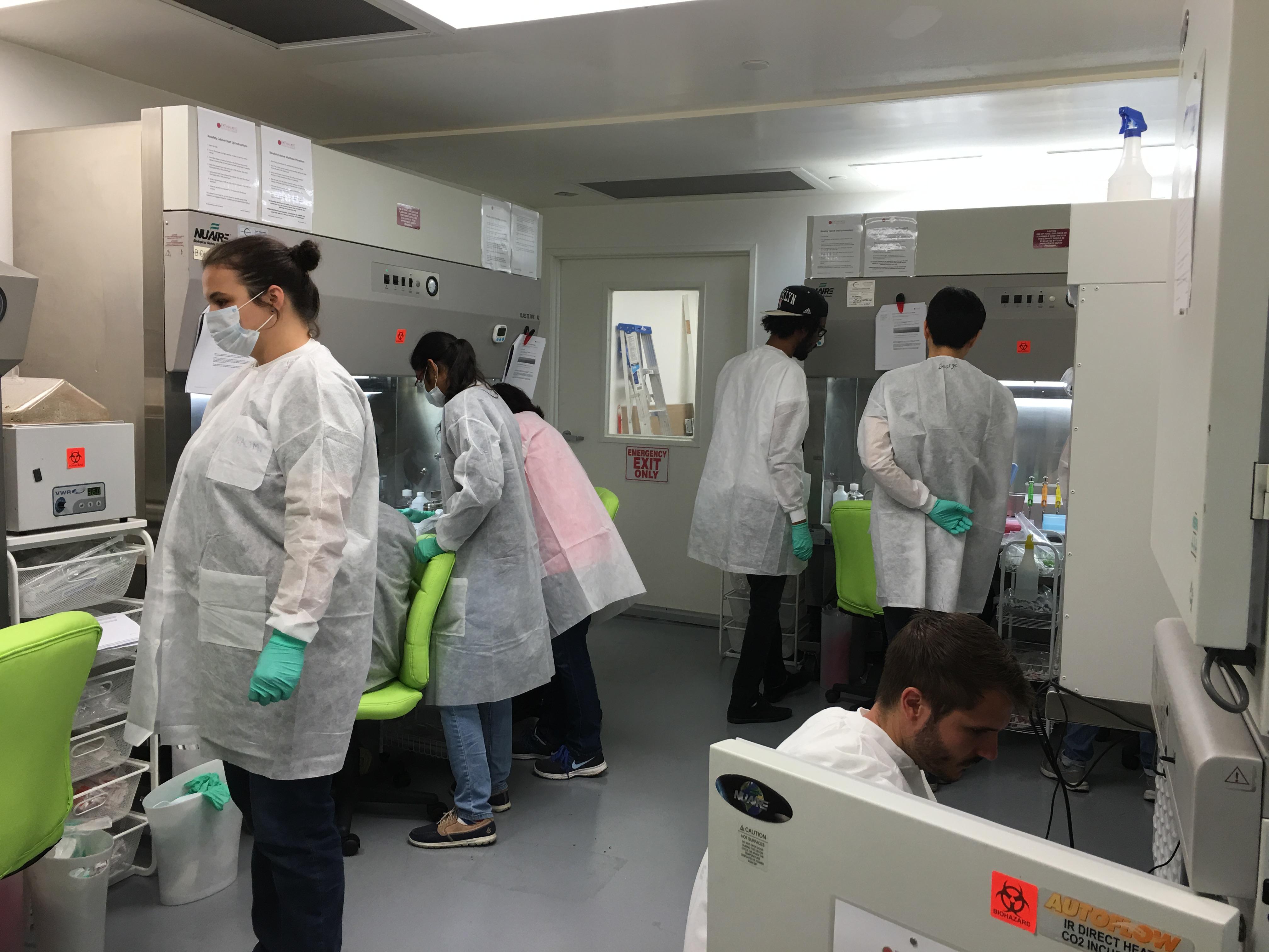 Summer Program - Sports Medicine | Essential Cell Culture Techniques