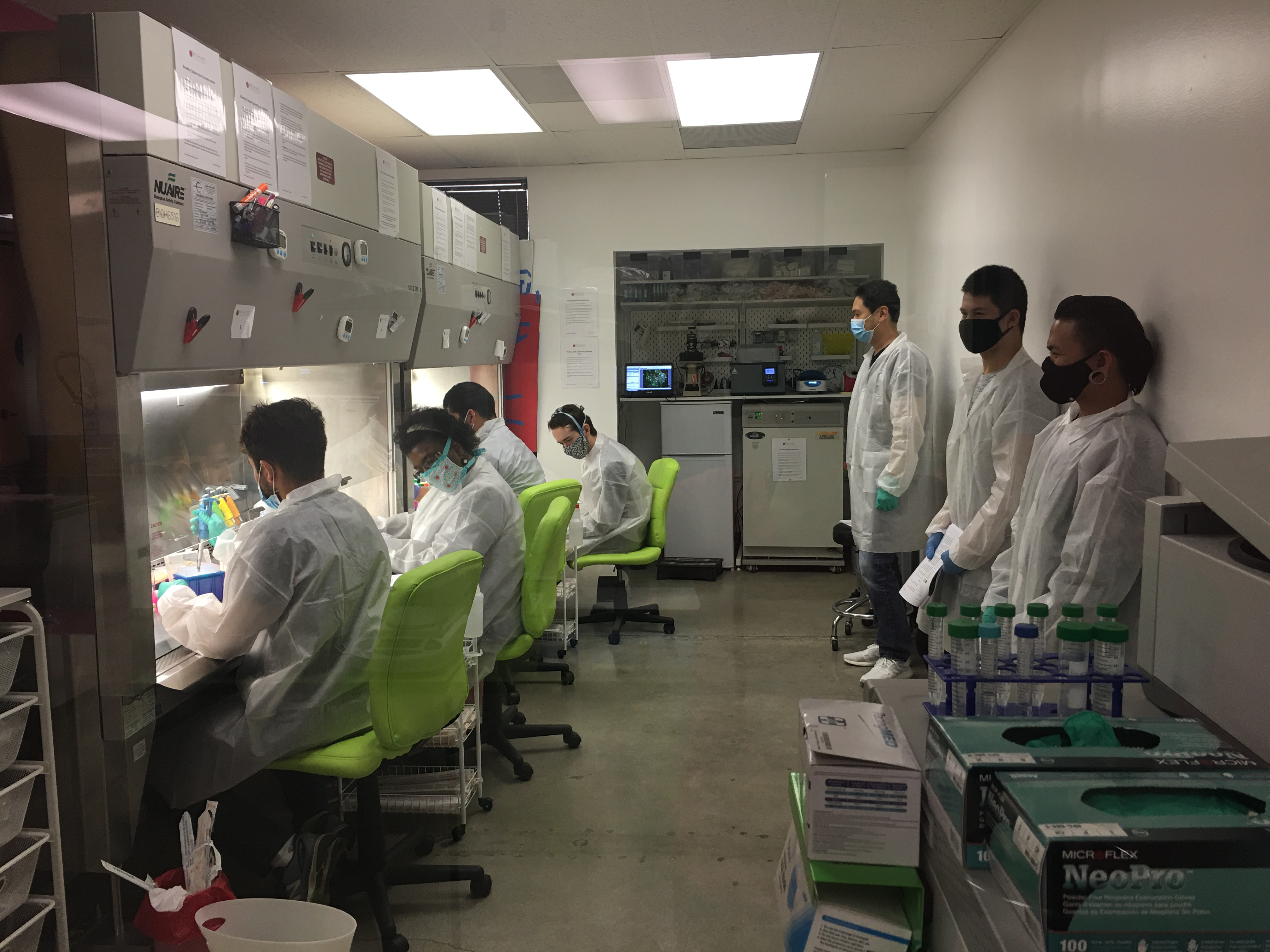 Summer Program - STEM | Essential Cell Culture Techniques