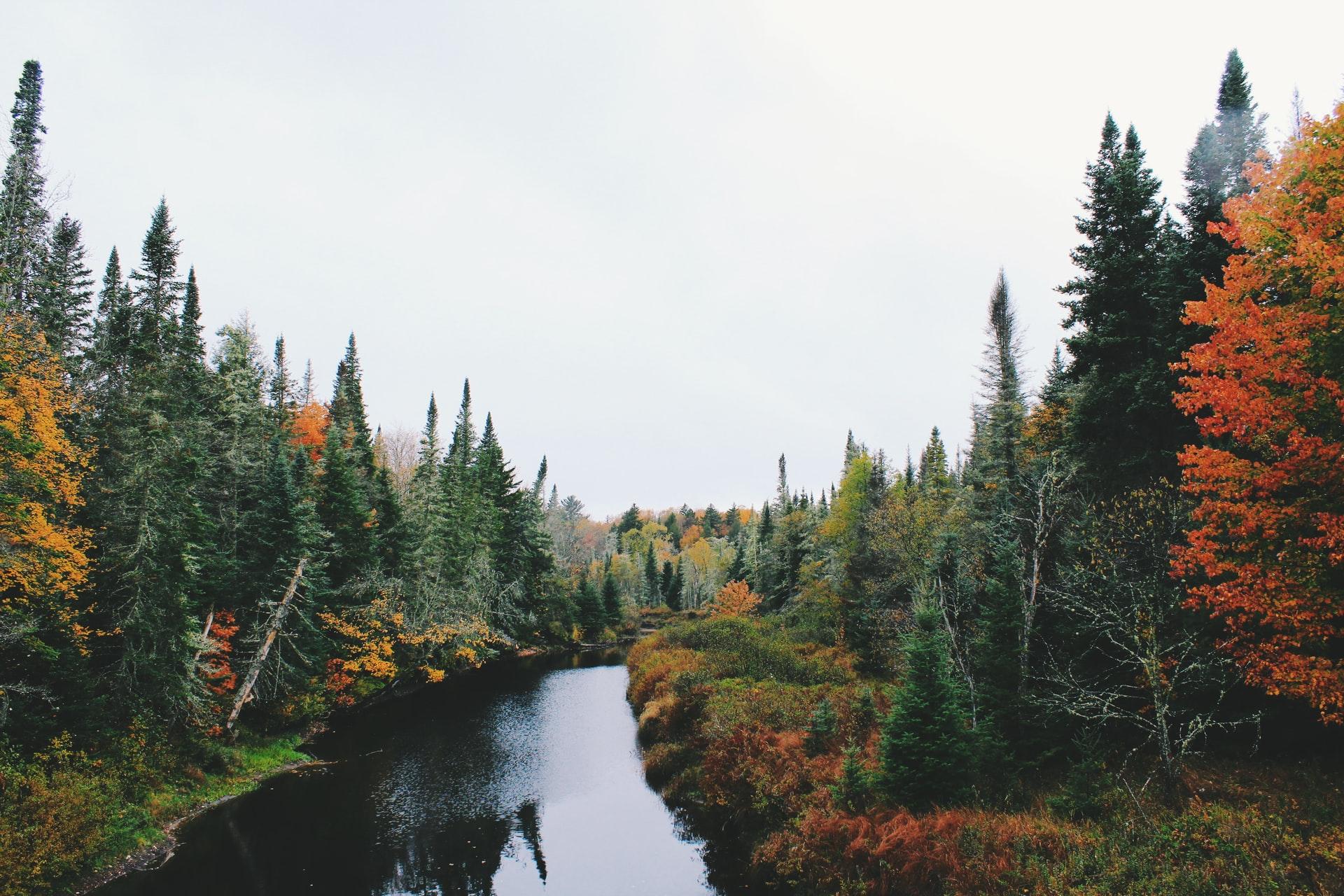 Ingenuity Year: Climate Change in Coastal Maine