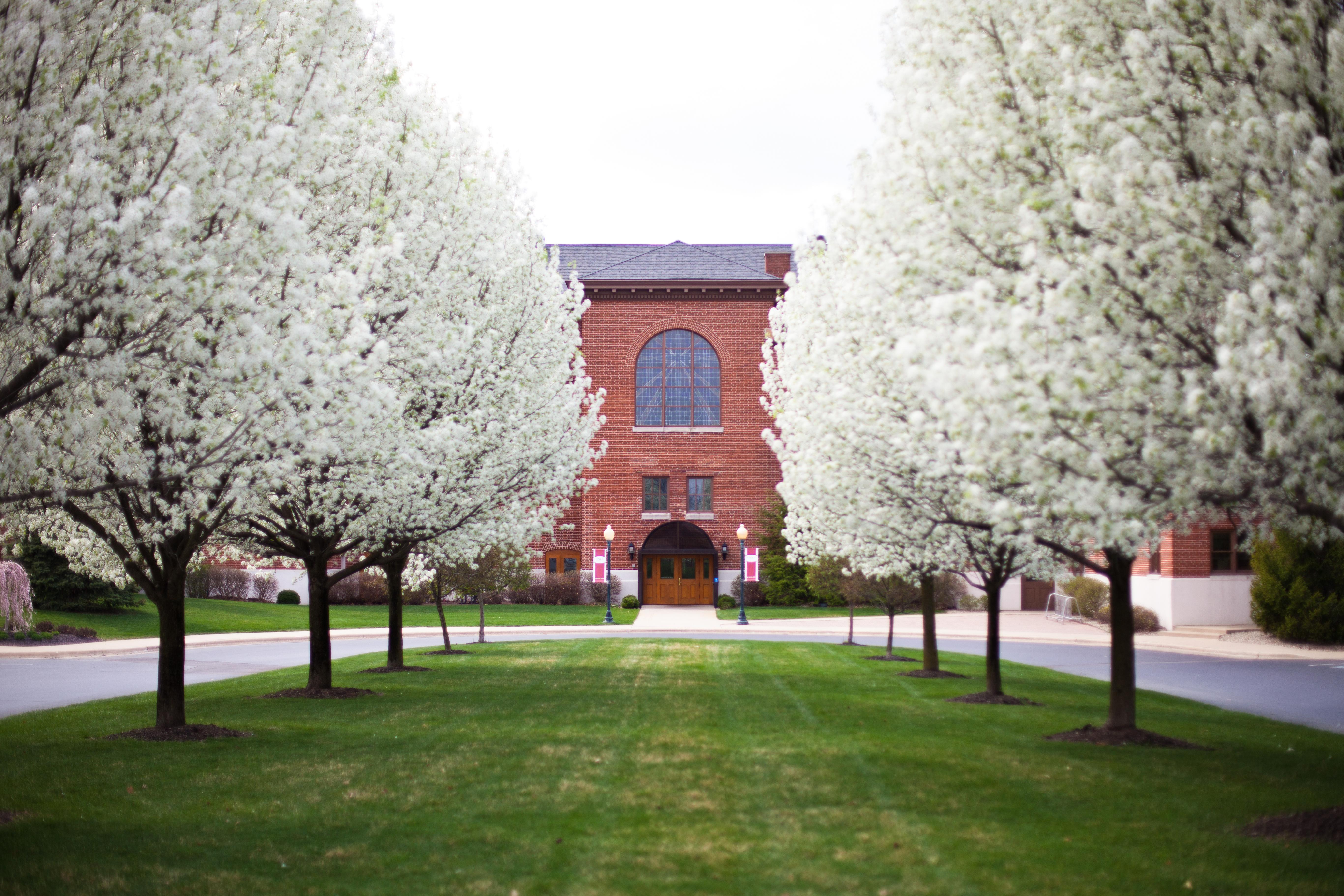 College - Grace College & Seminary  3