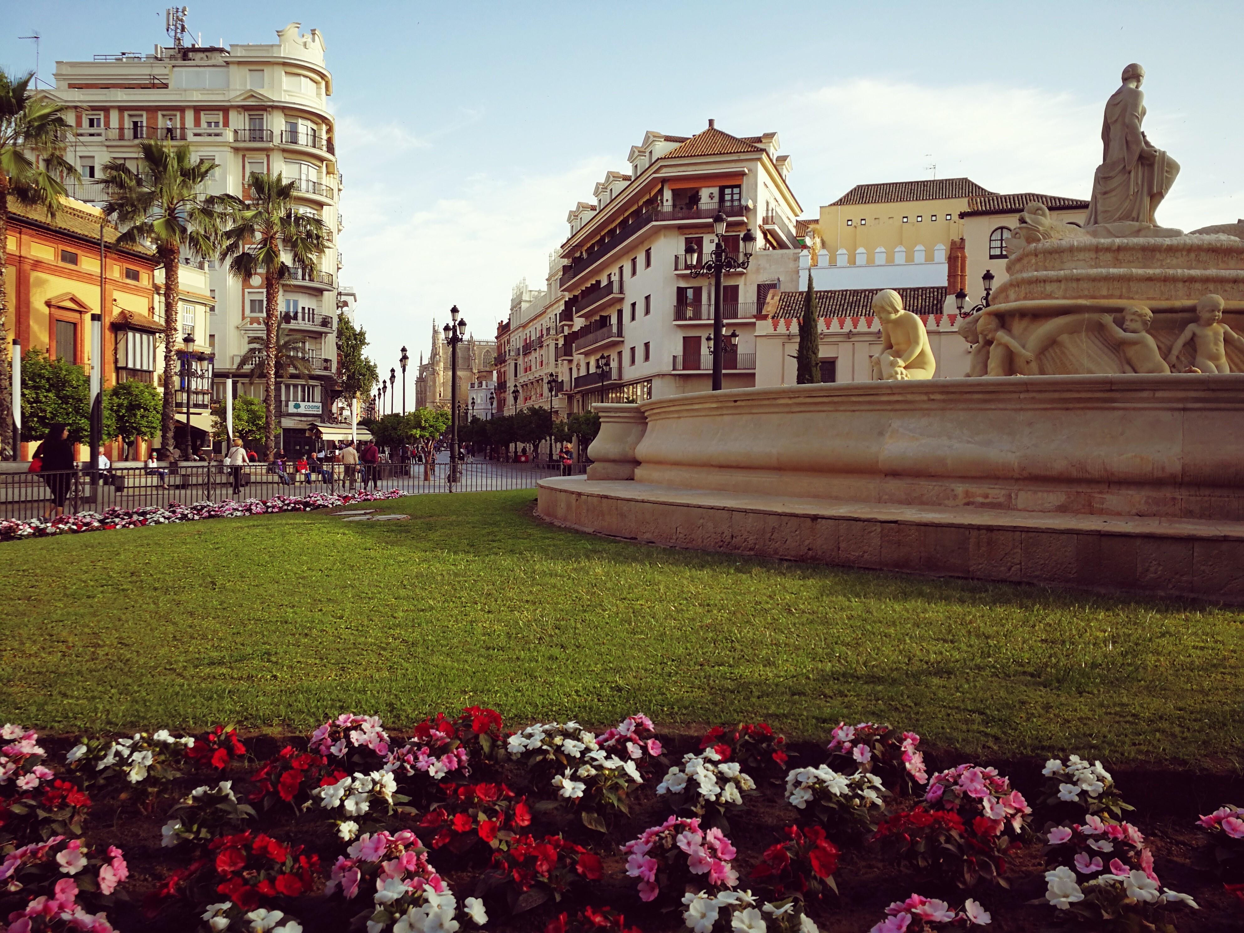 Gap Year Program - Seville Abroad: High School Exchange Program in Spain  5