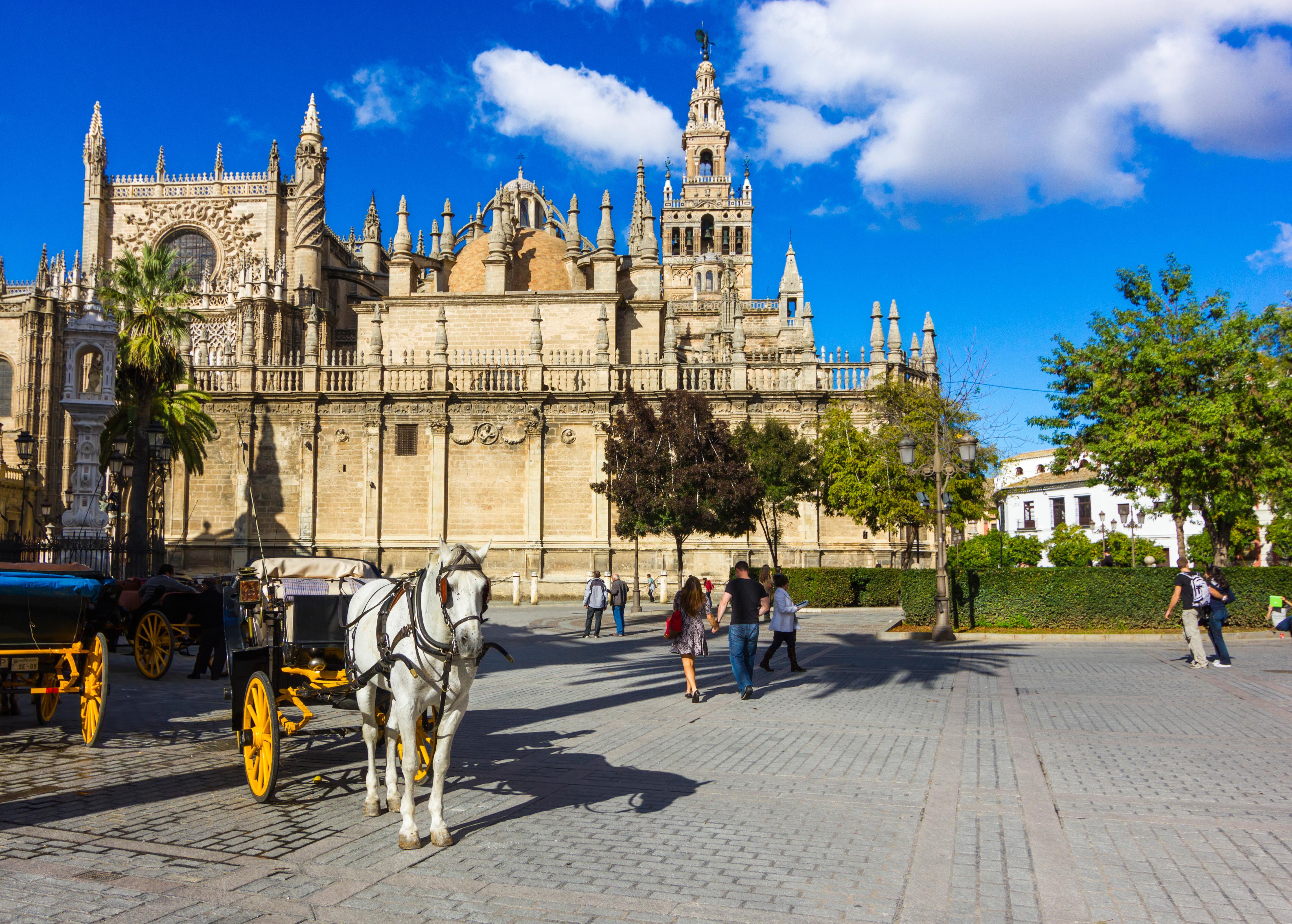 Gap Year Program - Seville Abroad: High School Exchange Program in Spain  3