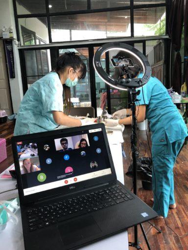 Loop Abroad: Virtual Veterinary Internships