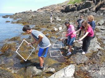 Boston Leadership Institute: Marine Biology Summer Program
