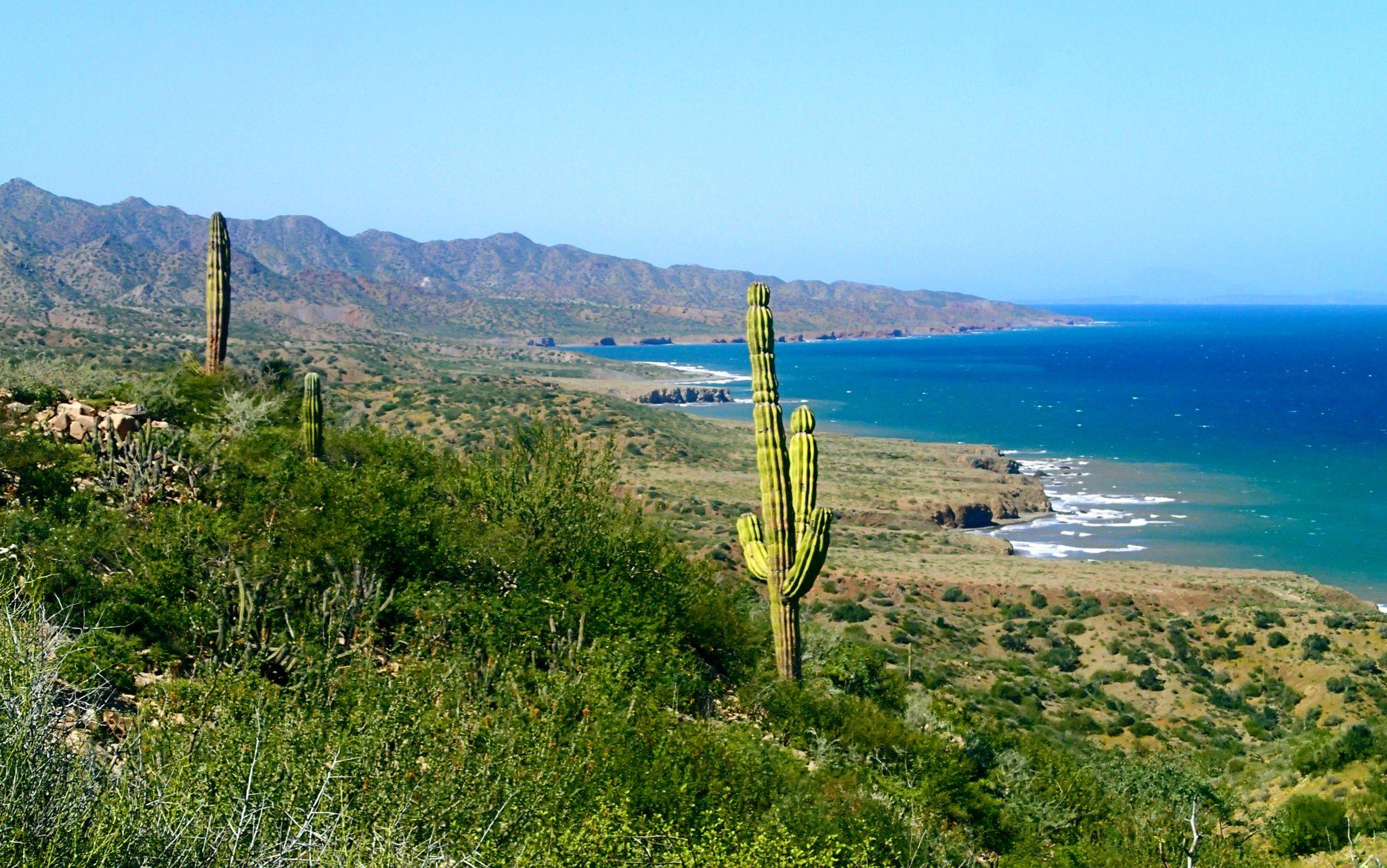 NOLS Fall Semester in Baja