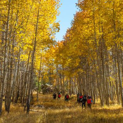 Gap Year Program - NOLS Fall Semester in the Rockies  1