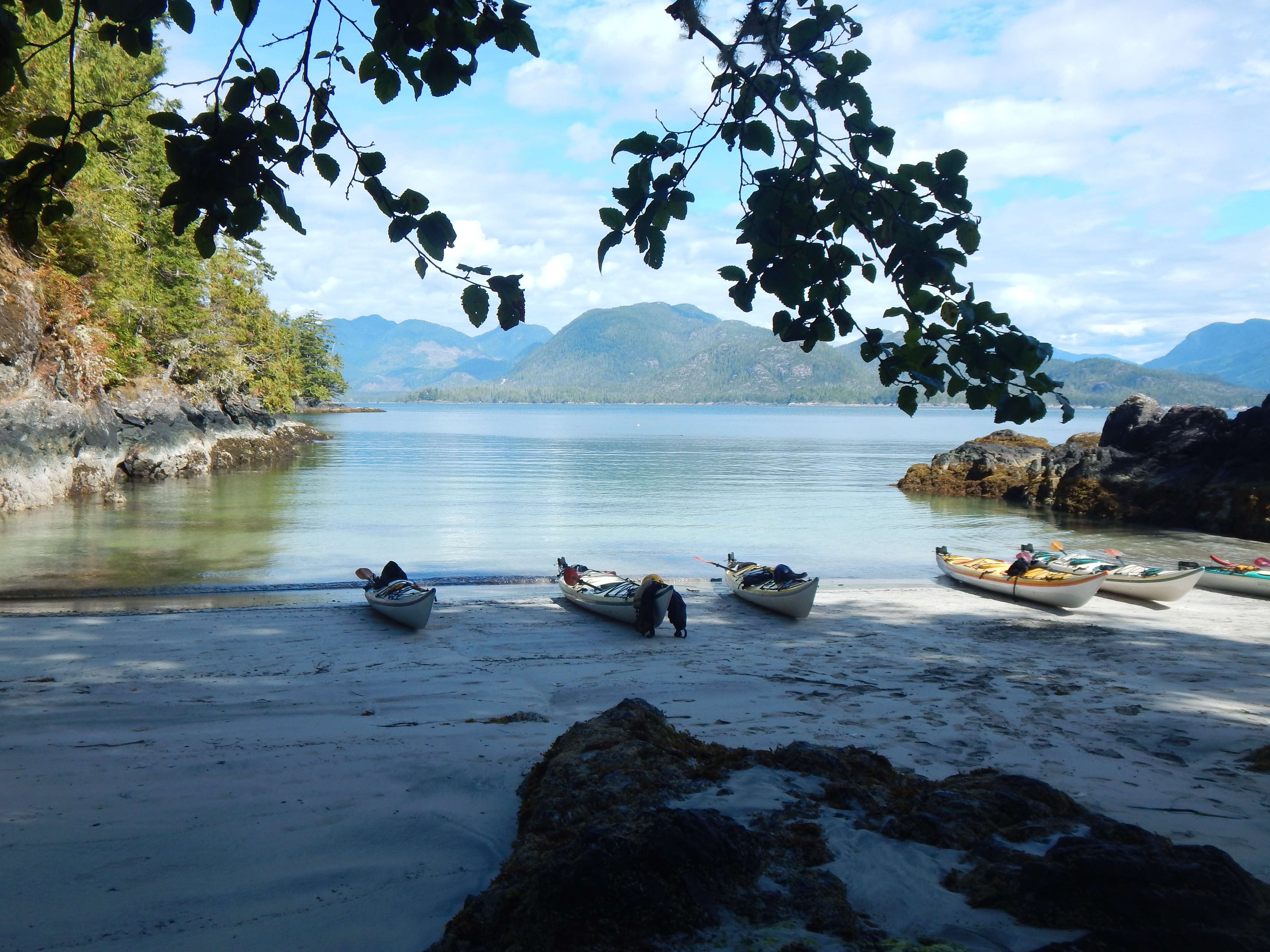 Summer Program - Kayaking | NOLS Pacific Northwest Sea Kayaking