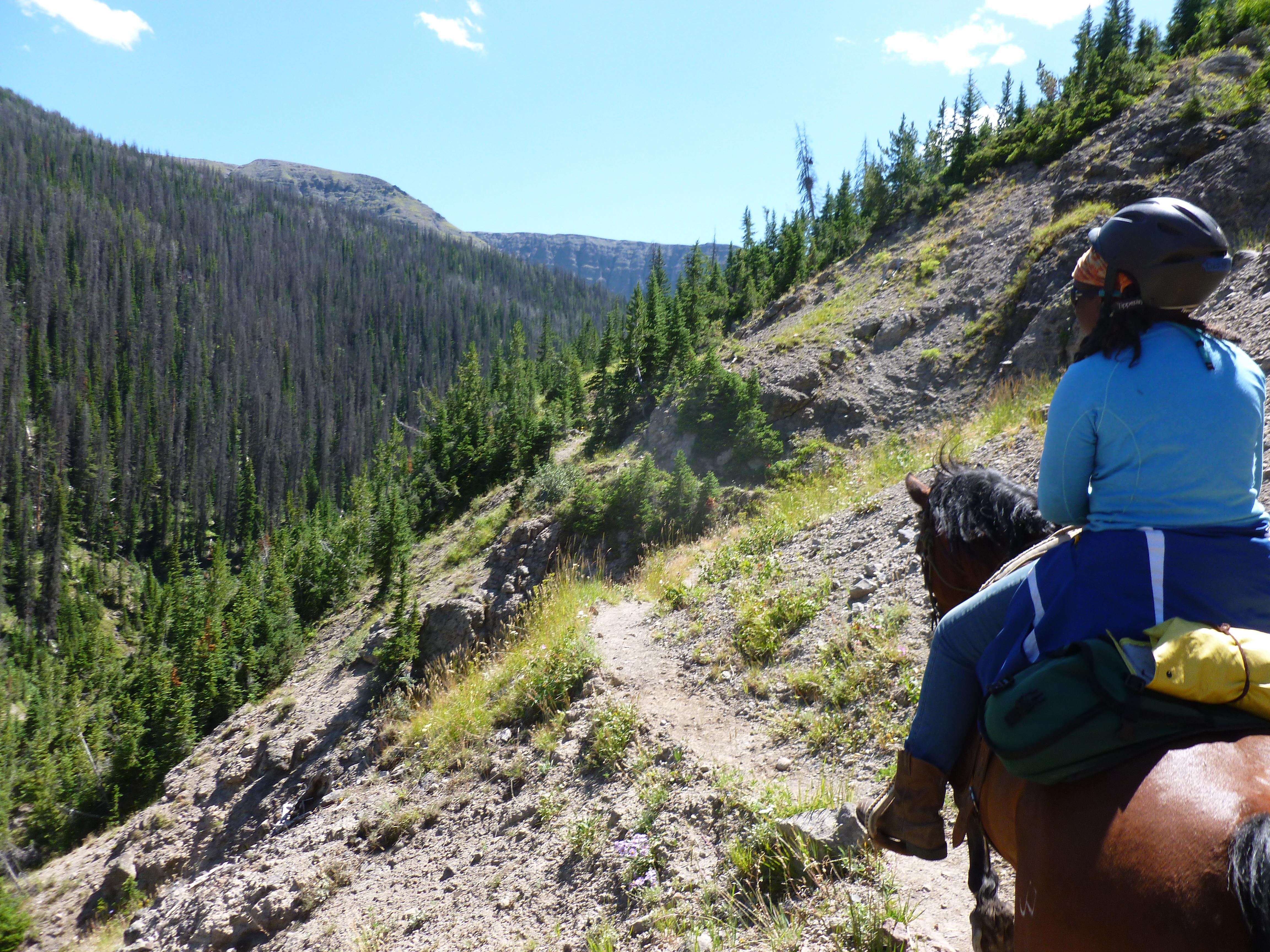 Summer Program - Horseback Riding   NOLS Wilderness Horsepacking
