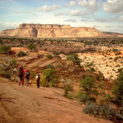 Gap Year Program - NOLS Wilderness Medicine and Rescue Semester  4