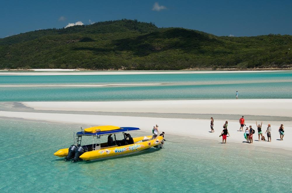 Summer Program - Wildlife Conservation | Pacific Discovery: Australia Summer Program