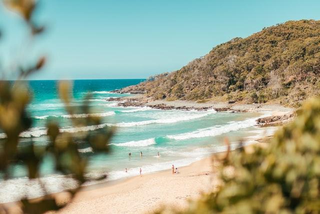 Pacific Discovery: Australia Summer Program   4 weeks